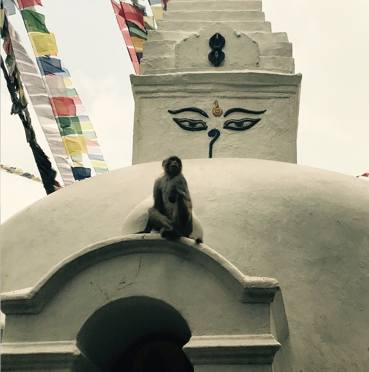 traveling to Nepal with kids - kathmandu temples