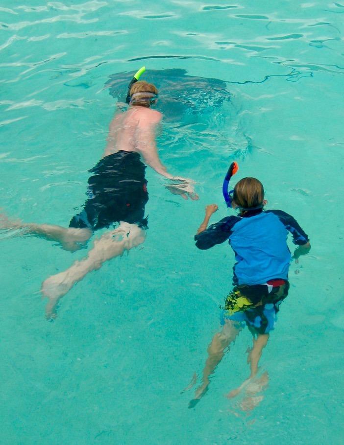 swimming with sharks Moorea tahiti with kids