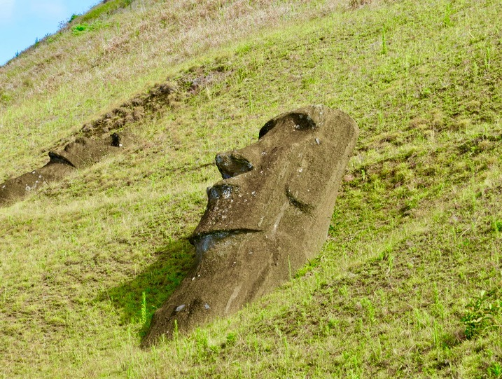 a Moai who didn't quite get to his final spot
