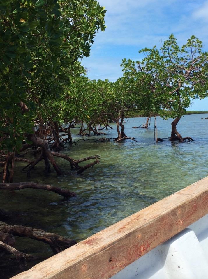 Tavarua Island resort FIji boatmen