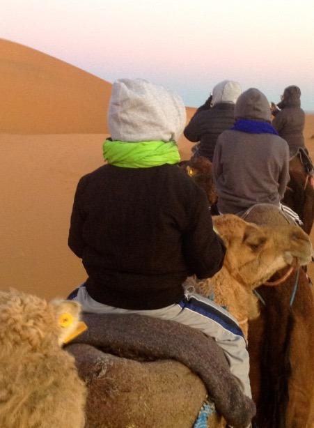 sahara desert, Morocco sunrise camel ride