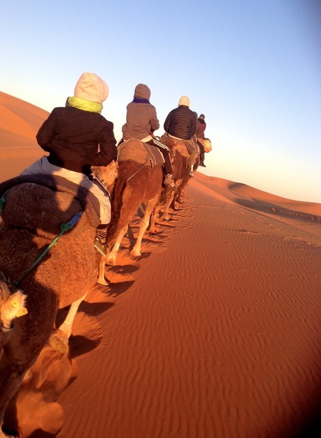 sahara desert, Morocco camel ride in sunrise