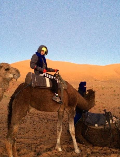 sahara desert, Morocco camels