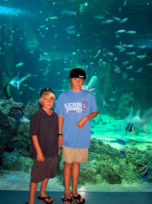 take your kids to Sydney, Australia aquarium