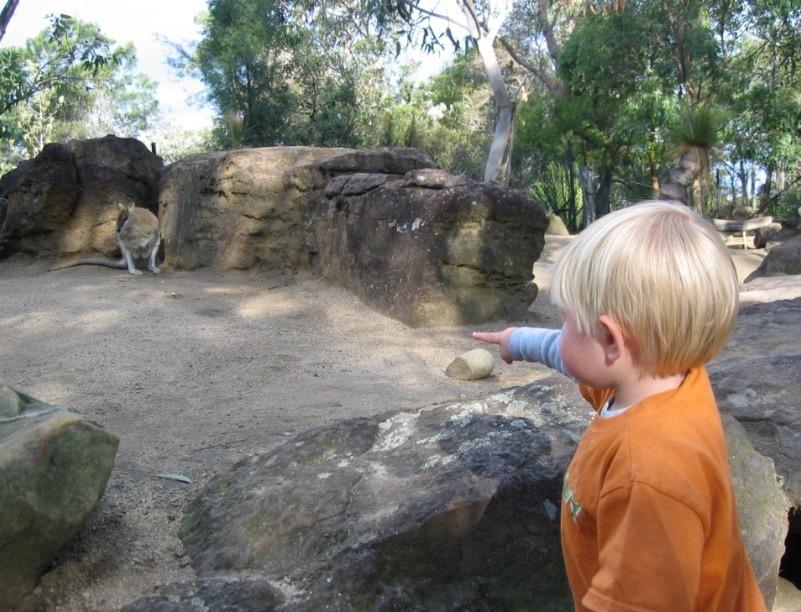 Sydney Zoo, Australia tarongo zoo