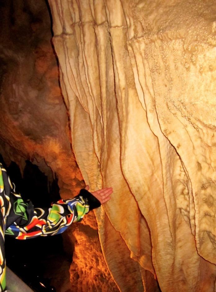 Waitomo Glowworm Caves new zealand stalagmites