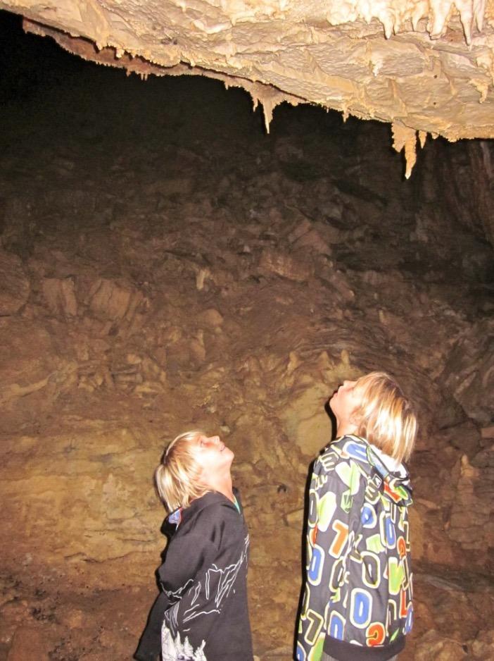 Waitomo Glowworm Caves new zealand with kids