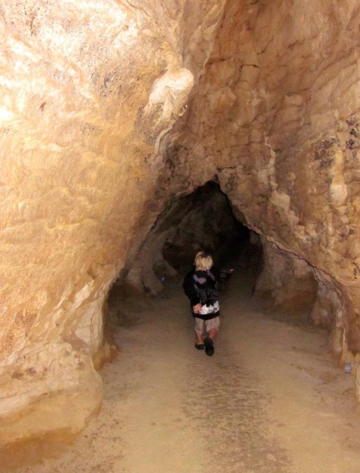 take your kids to Waitomo Glowworm Caves new zealand