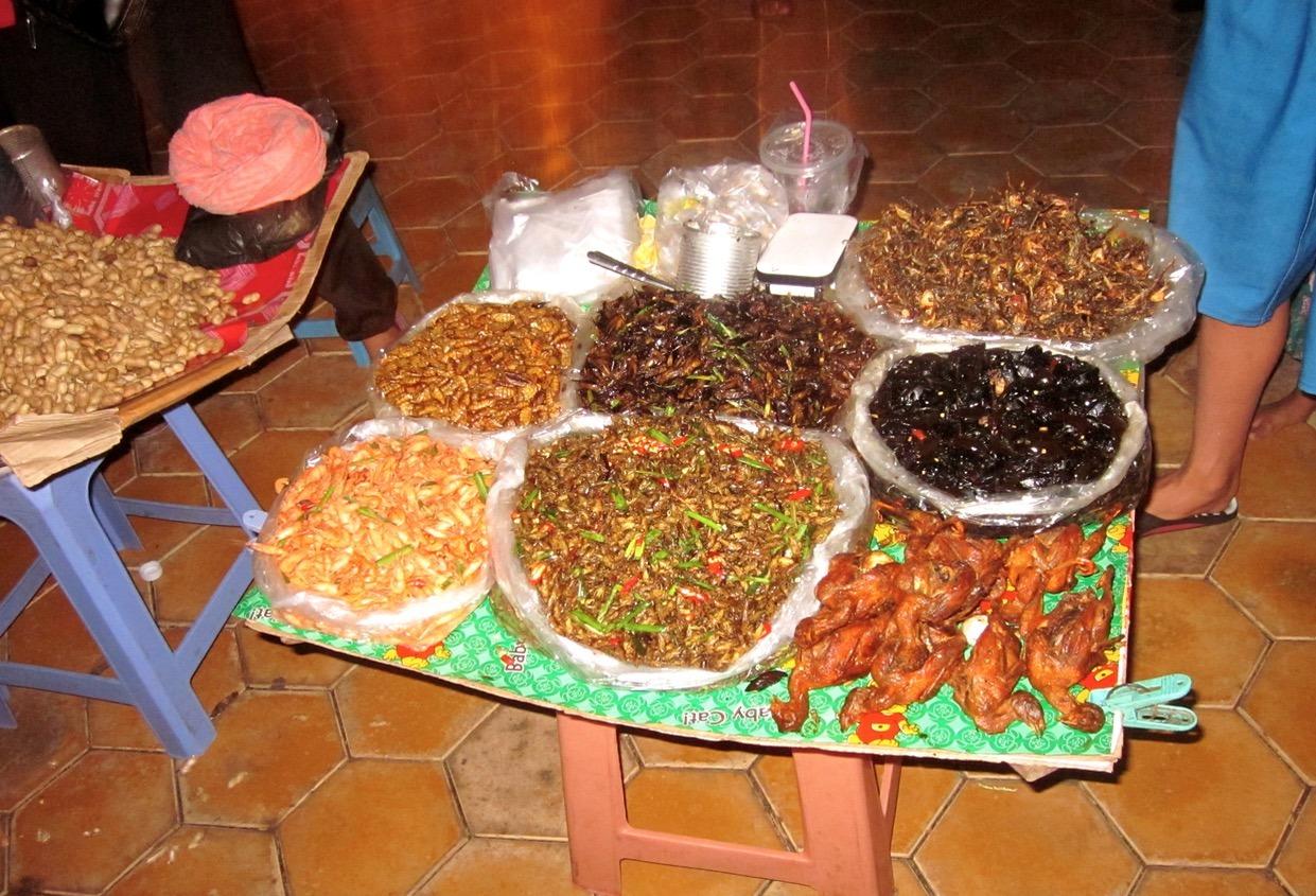 cambodia phnom penh siem reap food crickets tarantulas