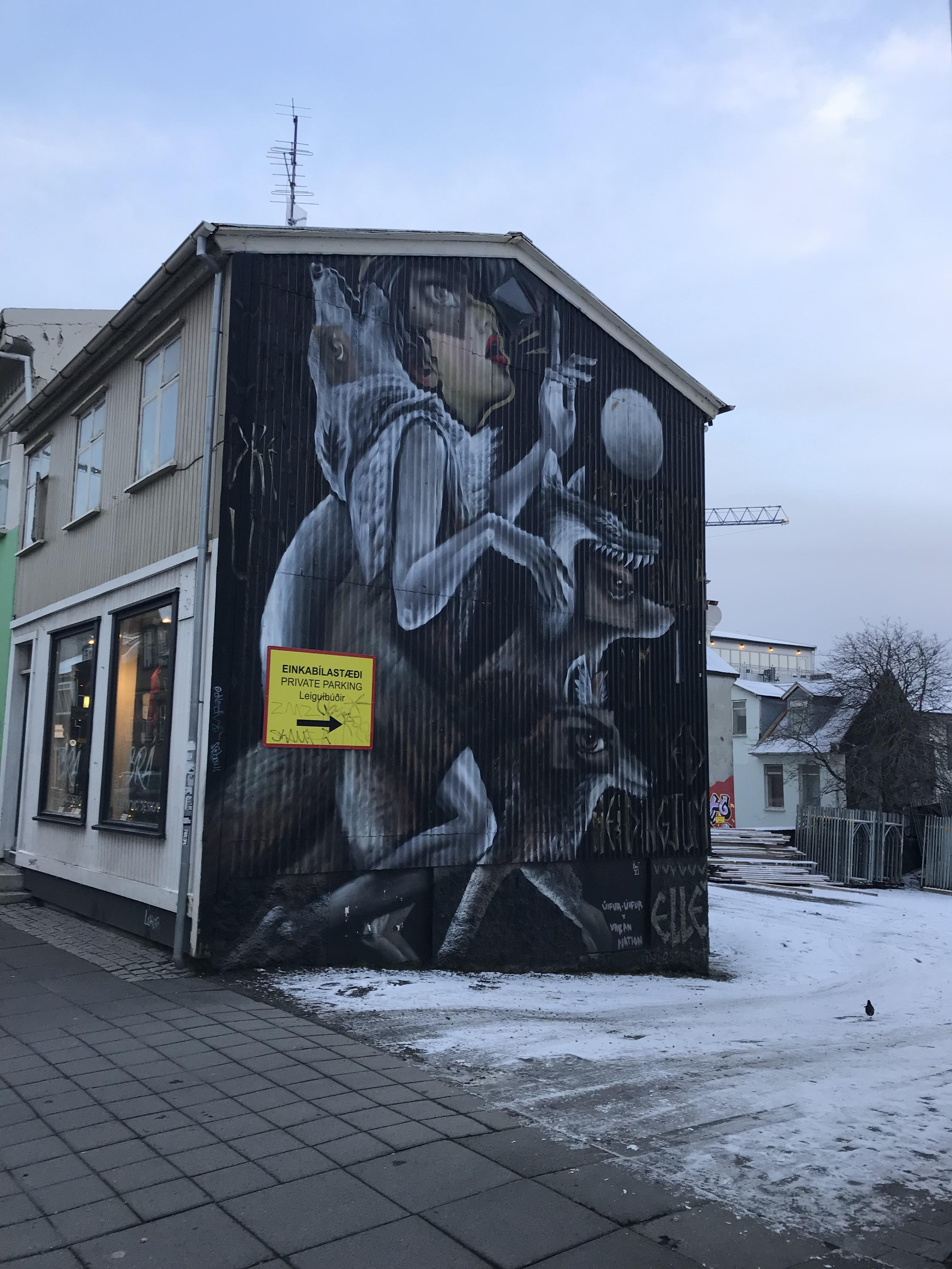 Reykjavik Iceland art