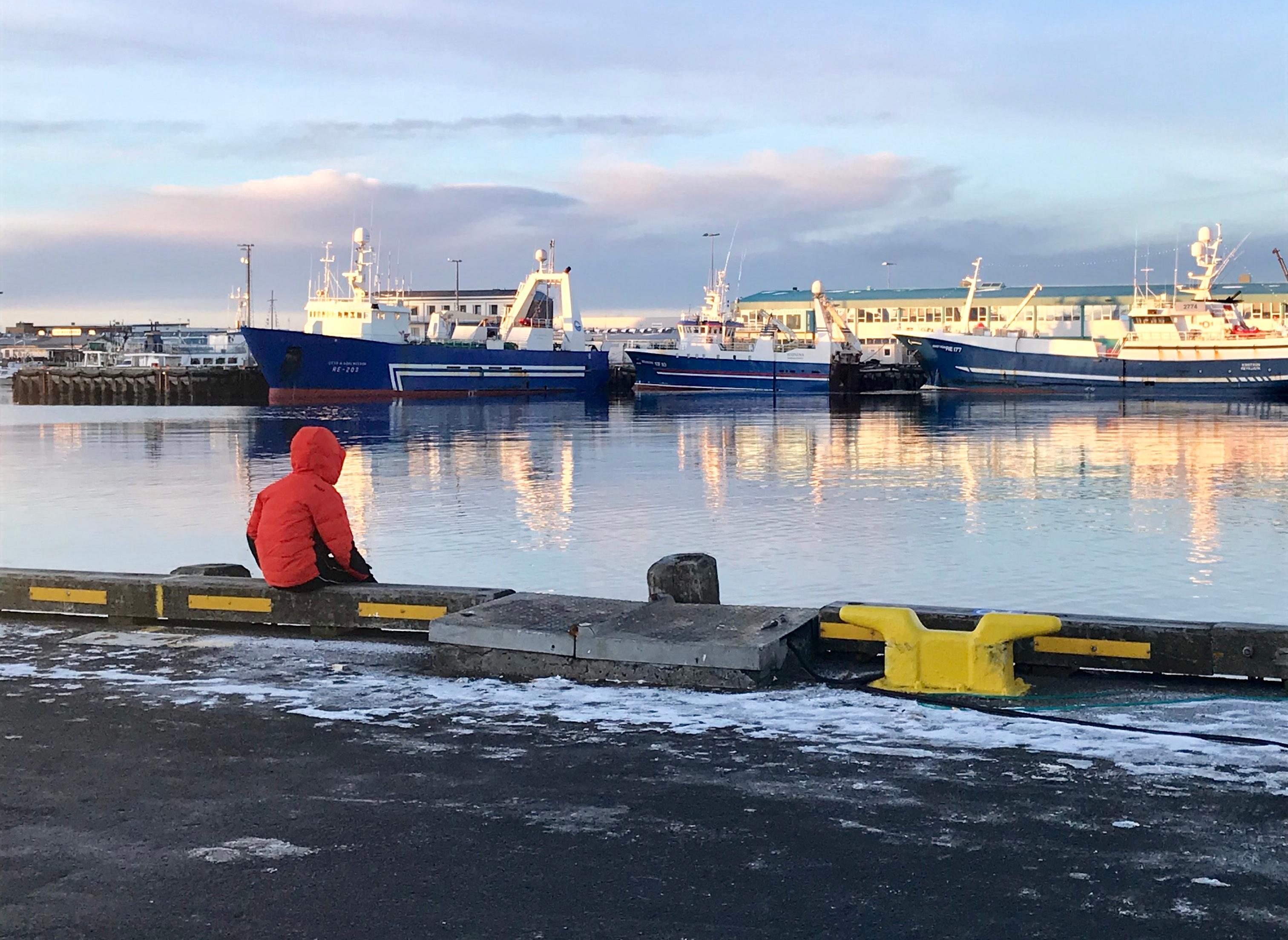 Reykjavik Iceland harbor