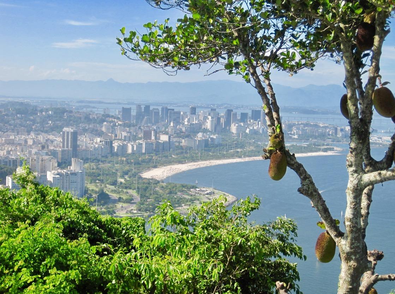 rio brazil beaches sugarloaf mountain