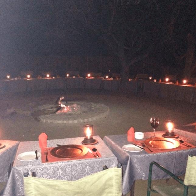 africa safari southafrica gomo gomo lodge
