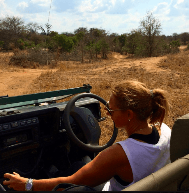 africa safari southafrica big5 rangerover