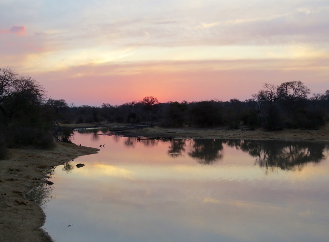 sunset africa safari southafrica big5