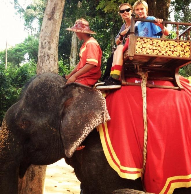 cambodia siem reap angkor wat elephant
