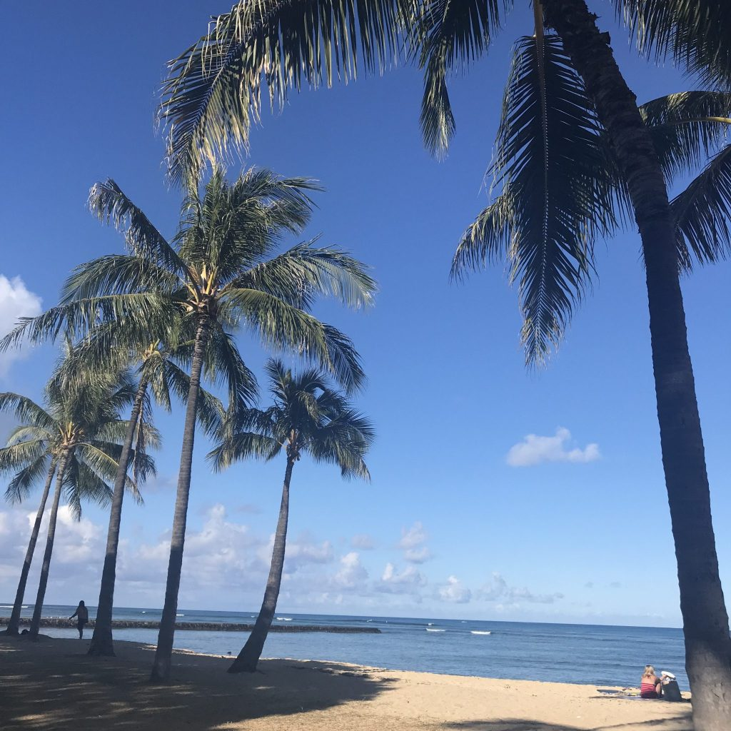 Oahu drive