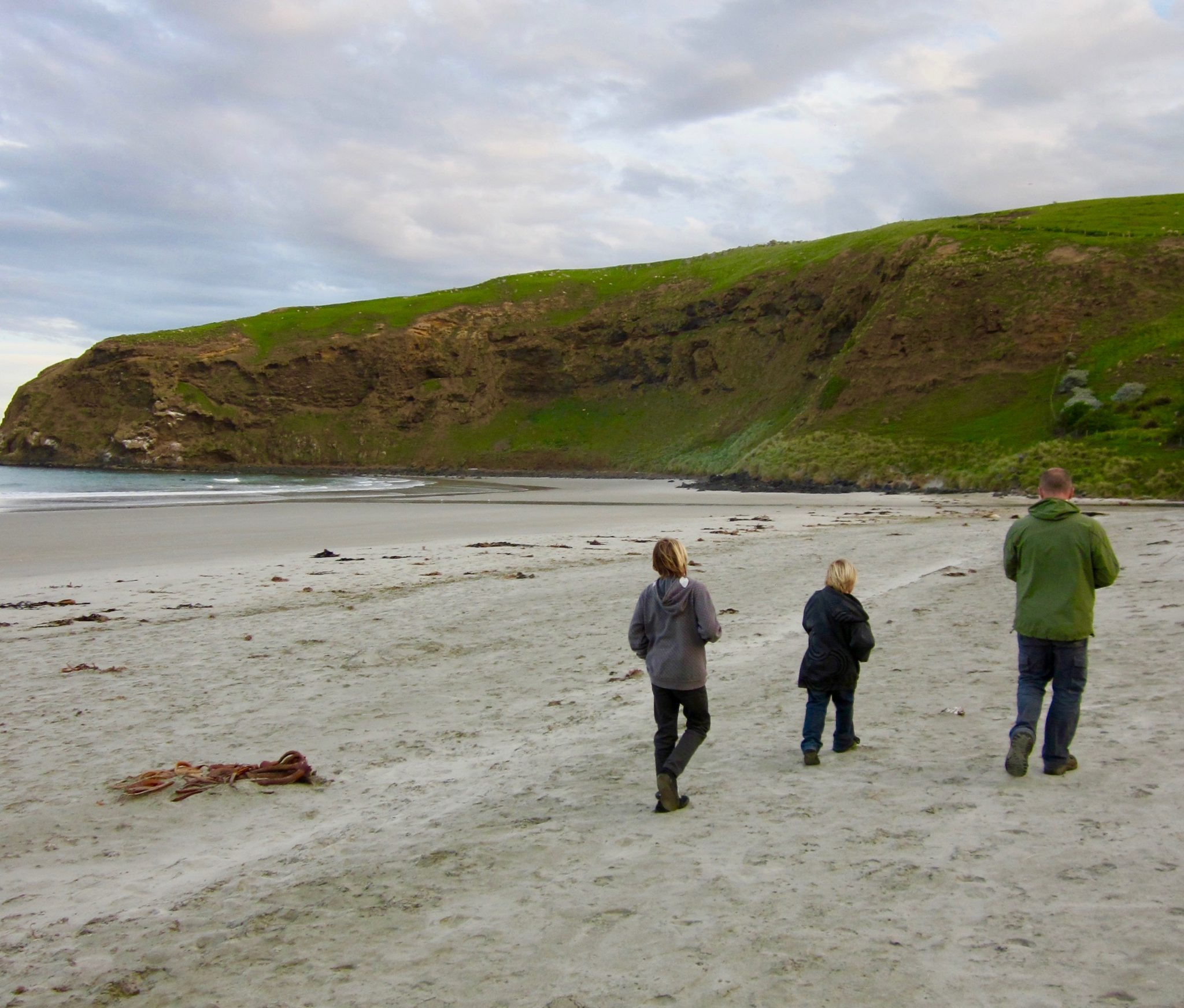 walking on the beach on the otago peninsula