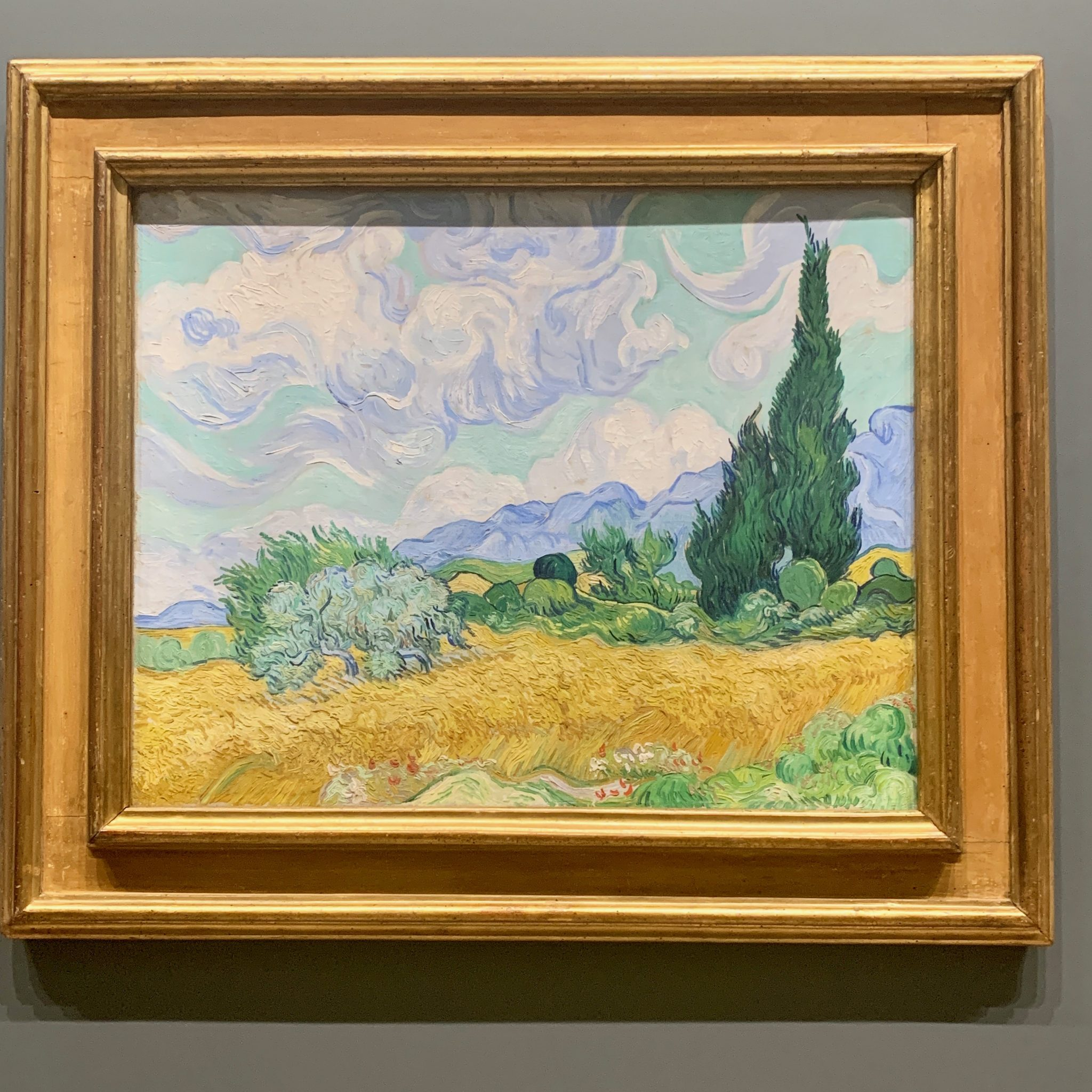 van gogh in the national gallery