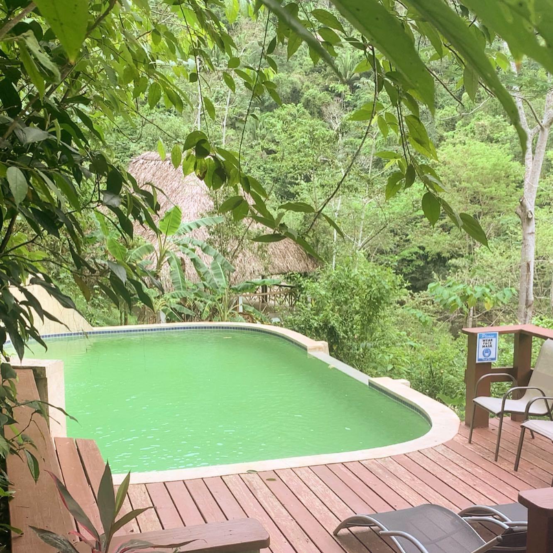 spring water pool at black rock lodge